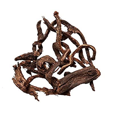 Gu Sui Bu herb | Drynaria Rhizome - Herbs for Bone Healing - Medicinal Grade Chinese Herb 1 Lb - Plum Dragon Herbs : Garden & Outdoor