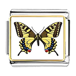 Chicforest Gold Plated Beautiful Lovely Butterfly Bracelet Link Photo Italian Charms