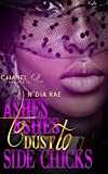 Free eBook - Ashes to Ashes  Dust to Side Chicks