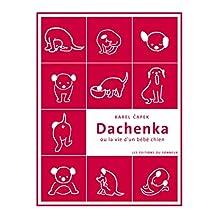 Dachenka