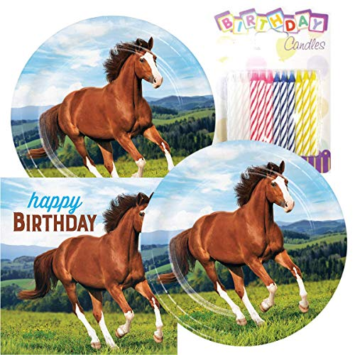 Horse and Pony Themed Party Pack - Includes Paper Plates & Luncheon Napkins Plus 24 Birthday Candles - Servers 16 (Horse Birthday Party)