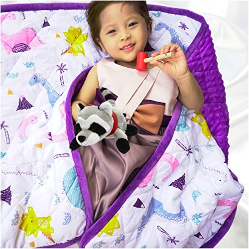 Weighted-Blanket-for-Kids-and-Adults-with-Dotted-Minky-Luxurious-Cover-20-Heavy-Blanket-with-Glass-Beads-Purple-Dinosaur-41x60-7lb