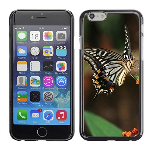 """Premio Sottile Slim Cassa Custodia Case Cover Shell // V00003938 machaon de tigre // Apple iPhone 6 6S 6G PLUS 5.5"""""""