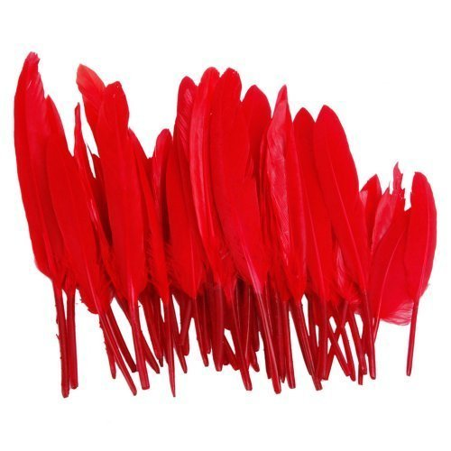 50pcs-home-decor-dark-red-goose-feather