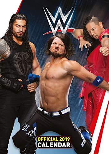 Wrestling Poster Calendar - WWE Men, Official Calendar 2019 (17 x 12 inches)