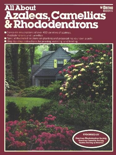 all-about-azaleas-camellias-rhododendrons
