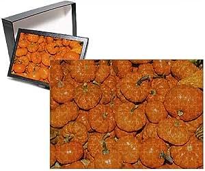 Photo Jigsaw Puzzle of Small Orange Pumpkins Squash Cucurbita Pepo Squash
