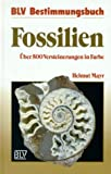 img - for Fossilien.  ber 500 Versteinerungen in Farbe. book / textbook / text book