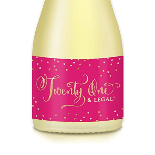 21st BIRTHDAY Party Ideas Mini Champagne Wine Bottle Labels Set Of 20 Hot Pink Decals Cheers To Twenty One Years Celebration For Daughter BFF