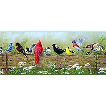 Chesapeake pur44671b clarence green songbird menagerie portrait wallpaper border