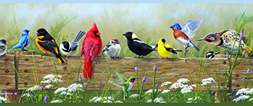 Chesapeake PUR44671B Clarence Green Songbird Menagerie Portrait Wallpaper Border
