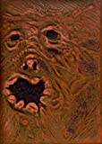 The Evil Dead - Book of the Dead [DVD] [1982]