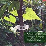 LEOBRO 150PCS Plant Support Garden Clips for Vine