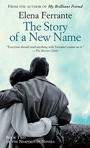 book cover of The Story of a New Name