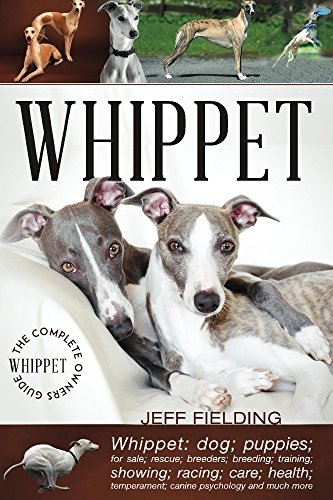 Whippet: The Complete Owners Guide: Whippet; dogs; puppies; for sale; rescue; racing; breeders; breeding; training; showing; care; health; temperament