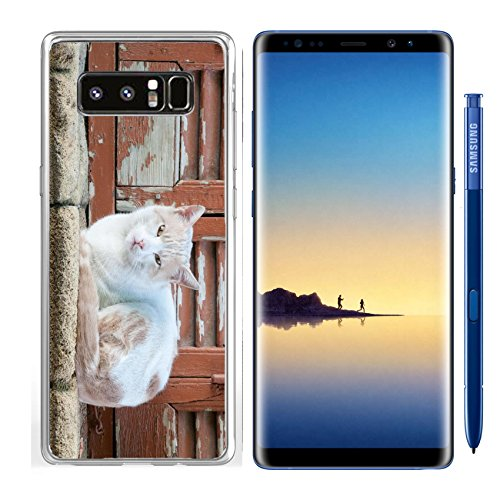 Animals Pane - Luxlady Samsung Galaxy Note8 Clear case Soft TPU Rubber Silicone IMAGE ID: 34590480 Beautiful white cat pet animal sitting on a window pane