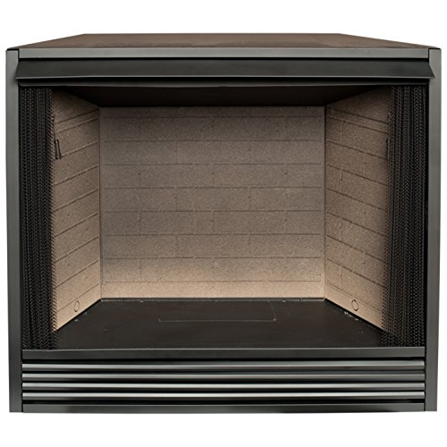 ProCom PC36VFC Vent Less Gas Firebox Insert (Procom Gas Stoves)