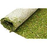 Amazon Com Moss Carpet Natural Forest Moss Aisle Runner