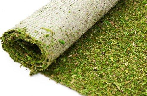 moss-runner-green-18w-x-12ft-long