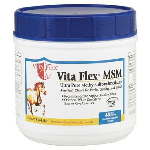 MSMVITAFLEX1# - Supplements Equine