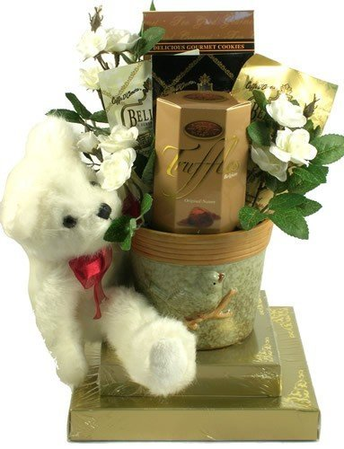 Gift Basket Village Beary Best Wishes Gift - Delivery Is Day Next Special