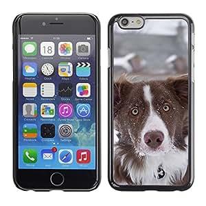 """Print Motif Coque de protection Case Cover // F00002520 Los mejores deseos de Año Nuevo // Apple iPhone 6 6S 6G 4.7"""""""