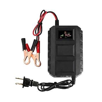 CWWHY Cargador y mantenedor de batería de Coche Inteligente ...