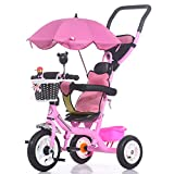 Trikes Kids Baby Carriage Children's Tricycle Bicycle 1-6 Years Old Large Baby Girls Car 3-wheeler (Color : Pink)