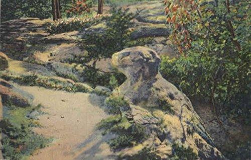 (Rock Resembling Prehistoric Animal, Lookout Mountain Rock City Gardens, Tennessee Original Vintage Postcard)