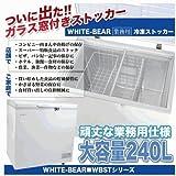 冷凍ストッカー ガラス窓付き 業務用 フリーザー 冷凍庫 240L
