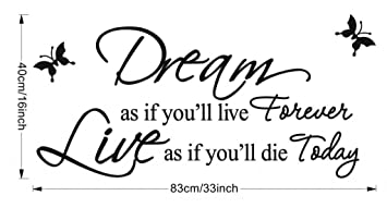Good Life Dream As If You Ll Live Forever Vinyl Wall Decals