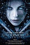 Underworld Evolution. Der offizielle Roman zum Film: Bd 2