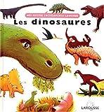 Dinosaures, Clothilde Perrin, 2035530237