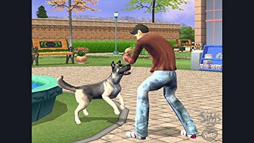 Electronic Arts The Sims 2 Pets - Juego (Nintendo DS, Simulación ...