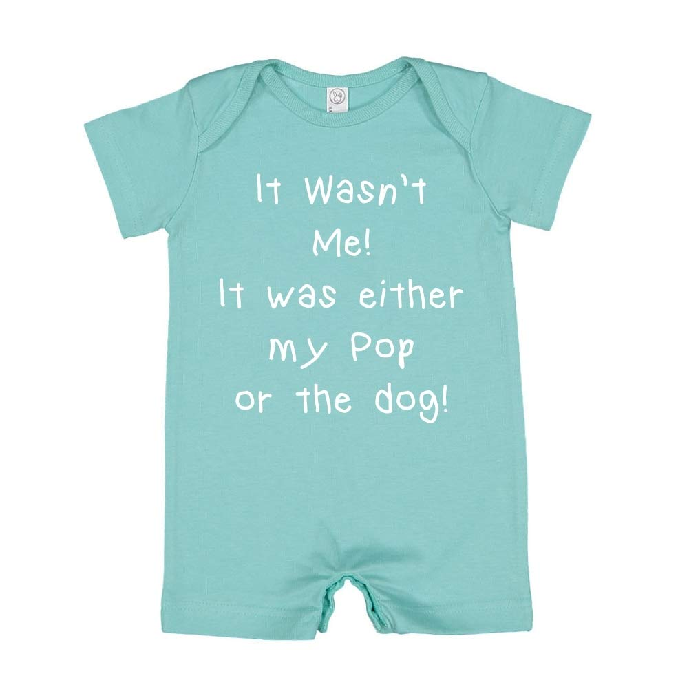 Mashed Clothing It Wasnt Me It was Either My Pop Or The Dog Baby Romper
