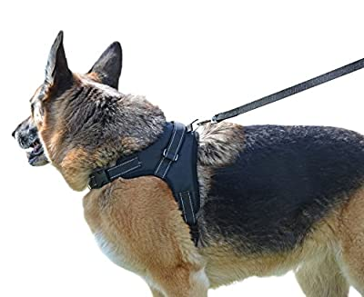 Our Legendary Dog Harness Across USA - Leash Included - MyPetsAmerica Reflective, Adjustable Harness With Handle - No-Choke, No-Slip - for Training, Walking, Hiking - No-Pull Effect