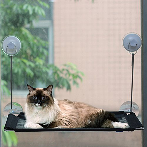 strong suction cup metal cat window perchwireless cat hammock window mounted up to 45lbs window mounted cat bed  u0026 cat sunny seat   provides  fortable     strong suction cup metal cat window perchwireless cat hammock      rh   catsstore