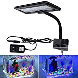 buy hygger Blue White LED Aquarium Lights, Clip on Fish Tank Lamp Lighting for Coral Planted Aquarium with Gooseneck Clamp (30 LEDs) now, new 2018-2017 bestseller, review and Photo, best price $69.99