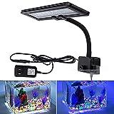 Best Aquarium Plant For Saltwaters - LED Aquarium Lights, Hygger Clip on Fish Tank Review