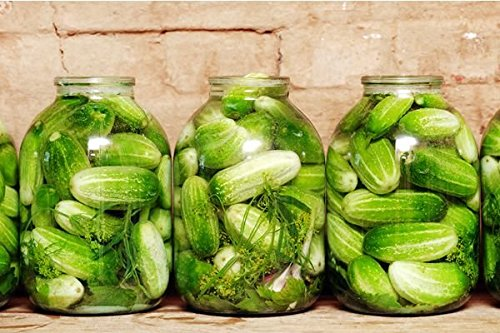 30+ ORGANICALLY Grown Homemade Pickles Sweet Cucumber Seeds, Heirloom Non-GMO, Crispy and Delicious, Tender Pickling, from USA
