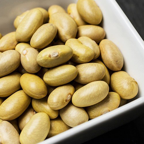 Mayacoba Canary Beans (12 ounce)