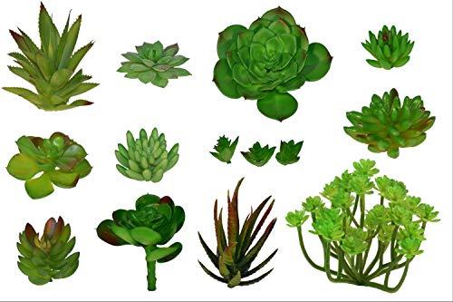 Fake Foliage 14 pcs Assorted Large + Small Size Artificial Unpotted Succulents + Reindeer Moss, Mixed Faux Succulent Picks Floral Arrangement, Home Decor Accent, DIY Craft, Plants - Arrangement Decor Floral