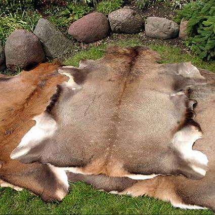 Grande peau de cerf rouge peau fourrure taxidermie ornement tapis tapis sol d/écoration murale pendaison gothique design