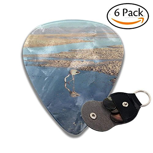 Family Vineyards Classic Guitar Picks For Electric/acoustic Guitar,and Bass ()