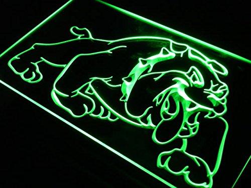 ADV PRO j518-b Bulldog Dog Home Decor Pet Shop Neon Light Sign