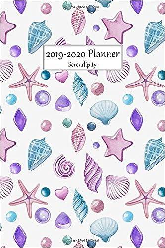 2019-2020 Planner Serendipity: Medium Size 2 Year Monthly ...