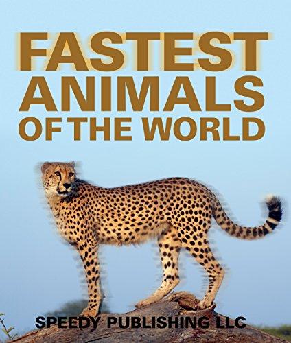 Fastest Animals Of The World: Super Fast Animals