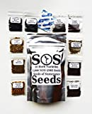 7,000+ Herb Seeds 10 Pack Variety