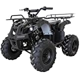 X-PRO ATV for Sale 125cc ATV Quad Youth 4 wheeler