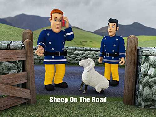 (Sheep on the Road)